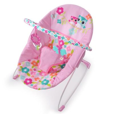 Fancifull Flower Vibrating Bouncer